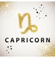 Horoscope predicts your destiny Zodiac Sign Gold vector image