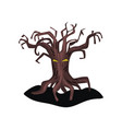 old spooky tree with yellow eyes and dry bare vector image vector image