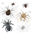 Set of spiderweb with spiders vector image