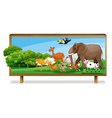 Animals in jungle on board vector image vector image