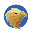 bald eagle or hawk head vector image