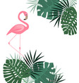 palm leaves and flamingo vector image vector image