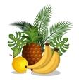 set cartoon fruits tropicals design vector image vector image