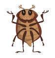 beetle cartoon vector image vector image
