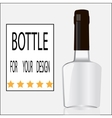 Bottle for your design vector image
