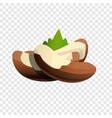brazil nut icon cartoon style vector image vector image