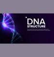 dna structure genetic molecule clone atom vector image