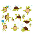 flat set of cute turtles in different vector image vector image