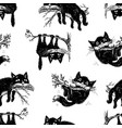 pattern of the cats on the tree branches vector image vector image
