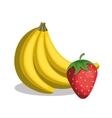 banana and strawberry fresh vector image vector image