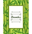 Frame with bamboo plants and leaves Design for vector image