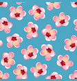 momo peach flower blossom on blue background vector image
