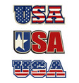 text symbol and icon usa vector image vector image