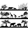 wild animals giraffe elephant lion vector image