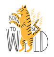 with tiger and lettering quote - born to be wild vector image