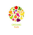 organic fruits banner with natural fresh vector image