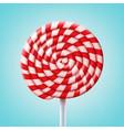 big spiral lollipop vector image vector image