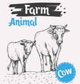 cow and a calf walk along the road vector image vector image
