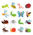 funny insect set bug beetle butterfly symbol vector image