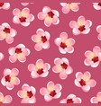 momo peach flower blossom on pink background vector image vector image