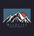 mountain typography graphics for slogan tee shirt vector image vector image