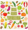 Farm fresh vegetables healthy food vector image