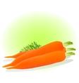 a carrot vector image