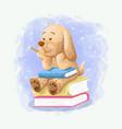 cartoon cute dog sit on book vector image vector image