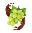 grape in chocolate splash 3d vector image