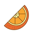 orange citrus fruit isolated icon vector image vector image