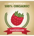 Organic Raspberry vector image vector image