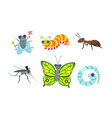 collection cute funny cartoon insects set fly vector image vector image
