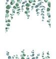 eucalyptus border frame on white background vector image vector image