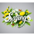 Fresh spring background with dandelions and vector image vector image