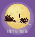 halloween kitten on broom cartoon vector image vector image
