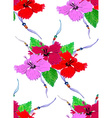 Hibiscus pattern4 vector image vector image
