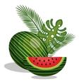 icon watermelon slice fruit design vector image