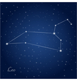 leo constellation zodiac vector image vector image