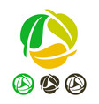 leaves recycling icon vector image