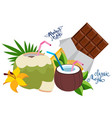 a set of textures and images with chocolate and vector image vector image