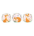 adorable little foxes vector image vector image