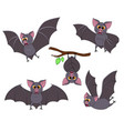 cartoon bat in different poses halloween elements vector image