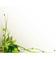 green flower background vector image vector image
