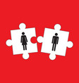 he and she puzzle vector image