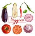 tasty juicy veggies painting vector image