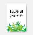 tropical paradise poster with monstera palm vector image
