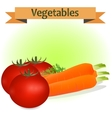 a carrot and tomato vector image
