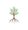 abstract tree with roots and green leaves vector image vector image