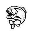 angry piranha jumping up isolated black and white vector image vector image