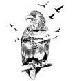 Double exposure eagle vector image